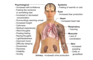 effects-on-anxiety-on-body
