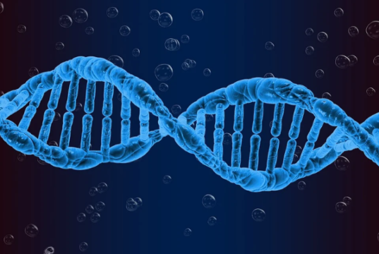 how is genetic testing done and who should do it